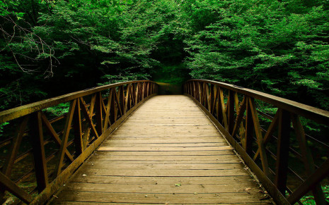 Beautiful-Wooden-Bridge-Wallpaper-For-Android